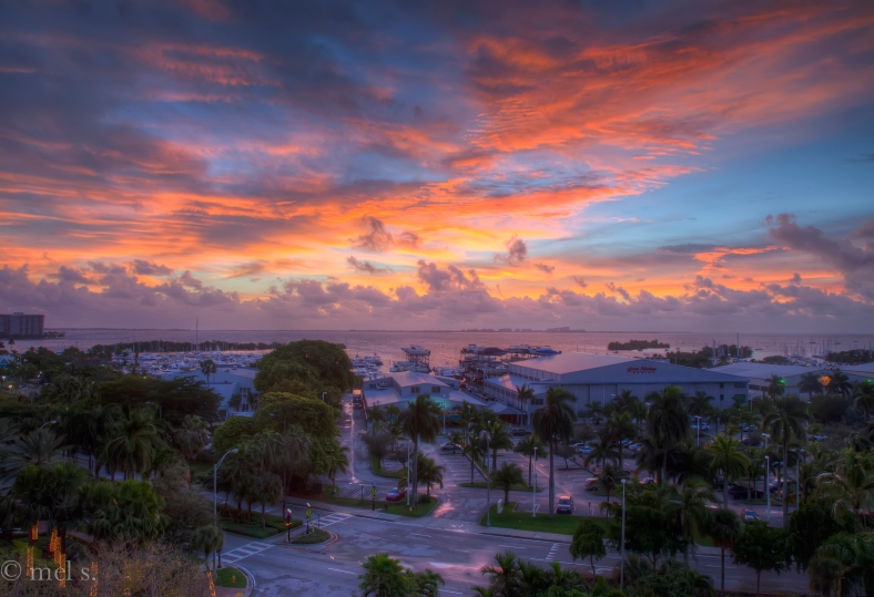 Biscayne Sunrise 759-61